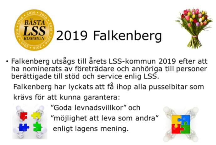 Vision: Bästa LSS-kommun 2019