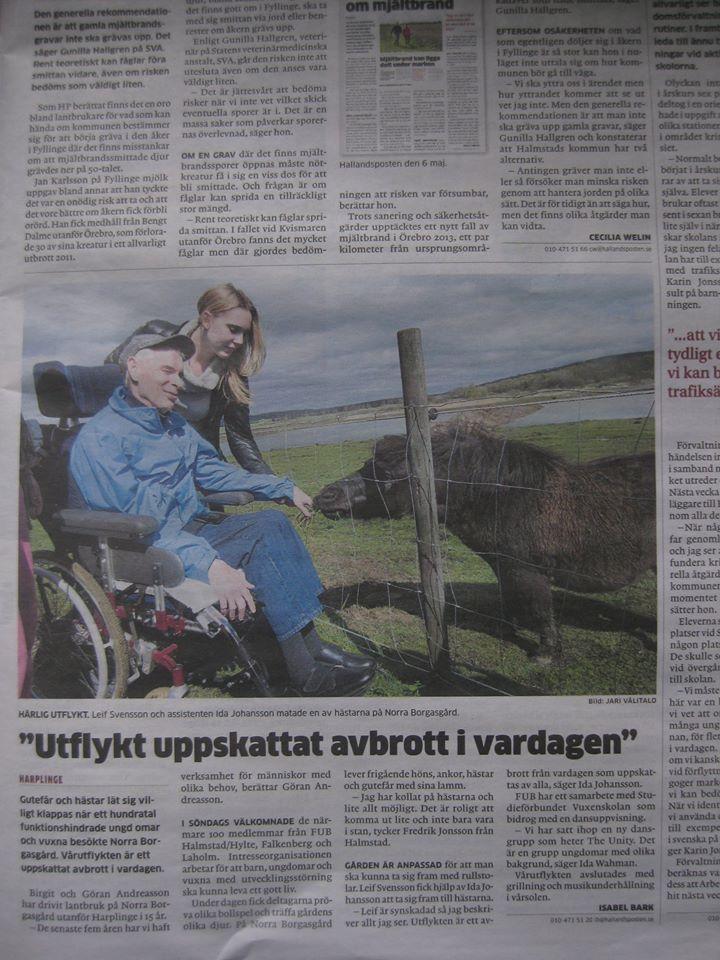 Reportage Norra Borgasgård