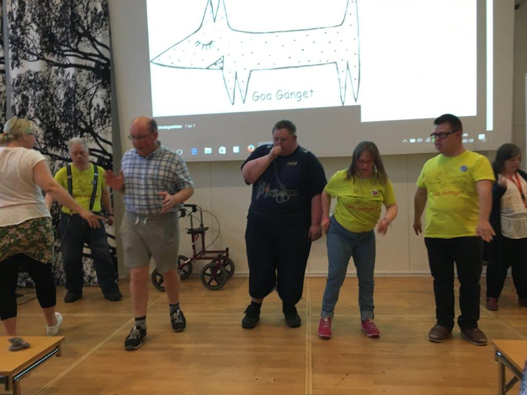 Goa Gänget från Lysekil dansar med deltagarna på Forum FUB 2017