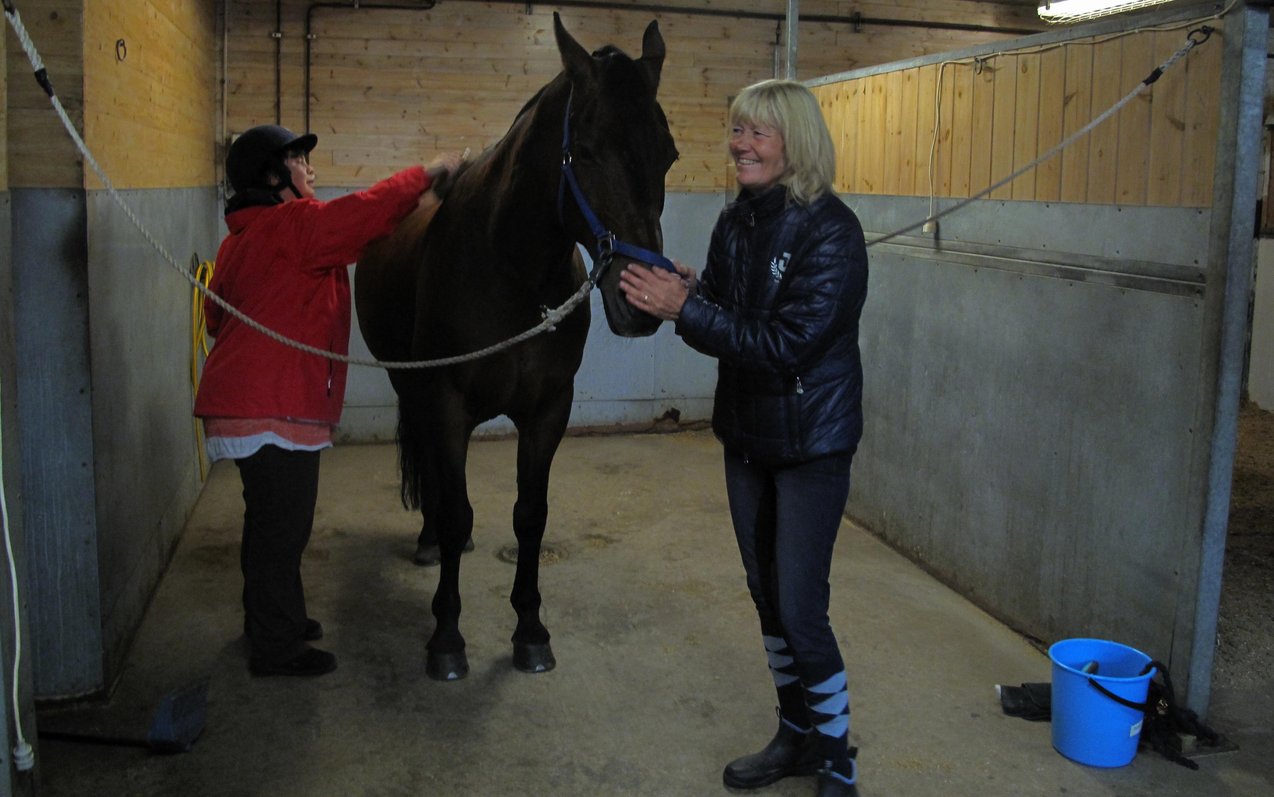 Cecilia borstar hästen