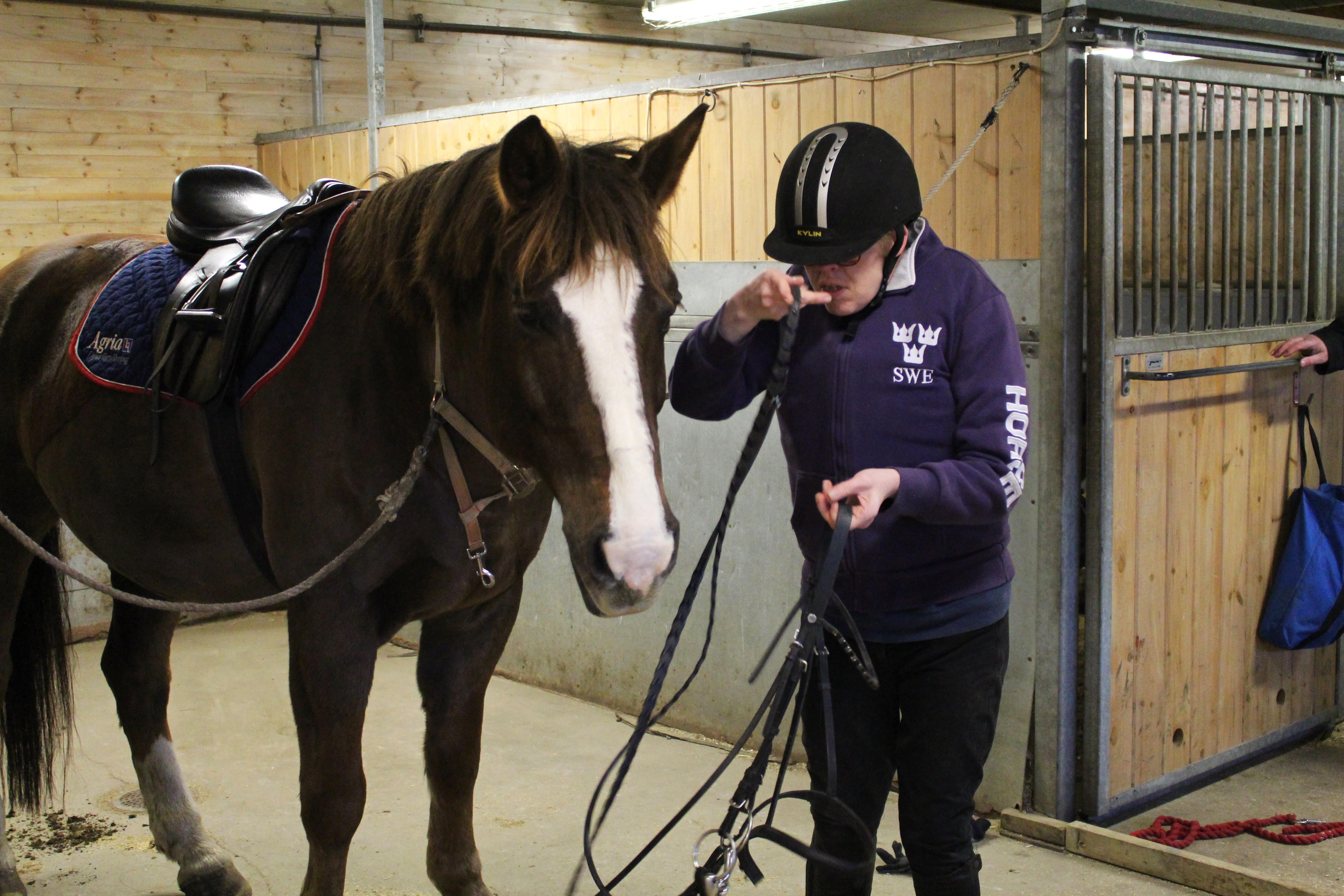 Jennyann tränsar sin häst