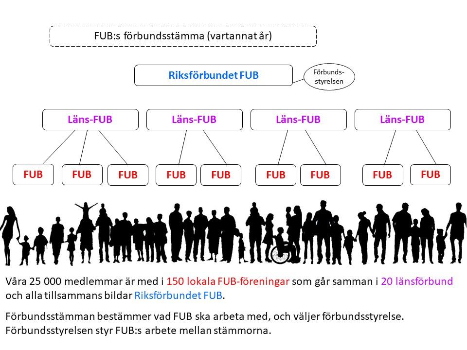 Organisationsskiss: 25 000 medlemmar, 150 lokala FUB-föreningar, 20 länsförbund. Alla tillsammans bildar Riksförbundet FUB. Förbundsstämman bestämmer vad FUB ska arbeta med och väljer förbundsstyrelse. Förbundsstyrelsen styr FUB:s arbete mellan stämmorna.